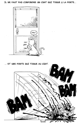 Le chat qui toque