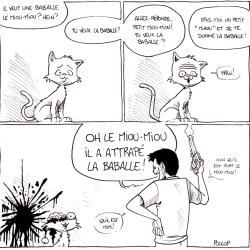 Le chat et la baballe